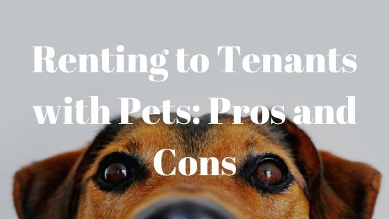 Pros and cons renting to tenants with pets