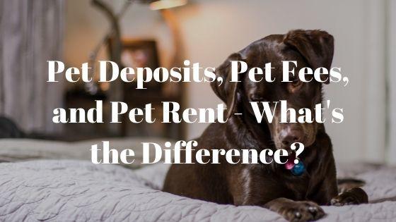 Realty Management Associates boise pet deposits